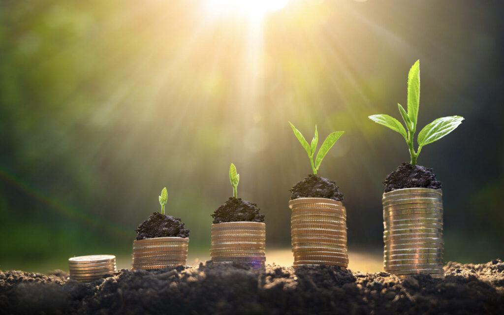 wzrost finansowy